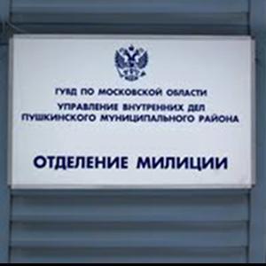 Отделения полиции Кервы